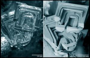 Samma bild, framtagen med ljusmikroskop (vänster) och elektronmikroskop. Elektronmikroskopet möjliggör betydligt tydligare bild.
