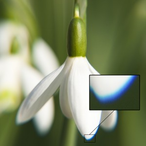Färgblödning i makrofotografi (utan akromatisk lins).