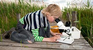 Med rätt motivation kan ett mikroskop vara fantastiskt både som verktyg och leksak.