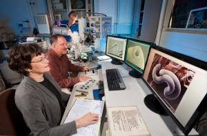 Moderna elektronmikroskop tar ofta upp hela rum bara för att bevaka.