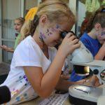 Mellanstadiebarn som studerar i optiska mikroskop. Bild av April Sorrow.