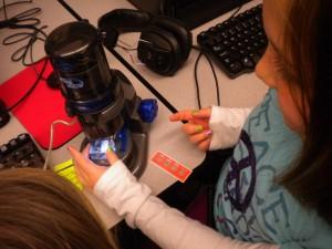 USB-mikroskop kopplas till datorn och visar förstoringen på datorskärmen. Bild av Brad Flickinger.